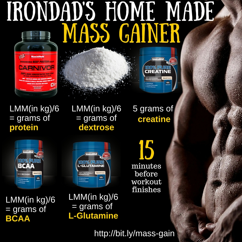 Irondad's home made Mass Gainer
